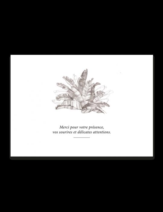 carte-remerciement-palmeraie-illustre-verso