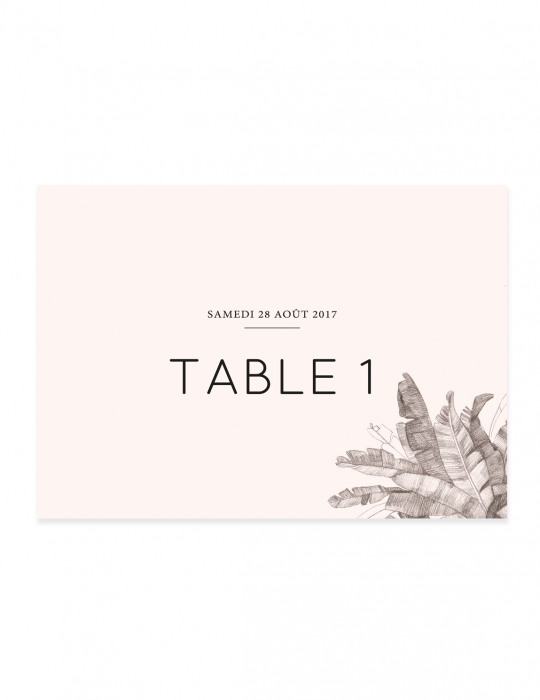 nom-de-table-palmeraie-septembre-papeterie-illustre