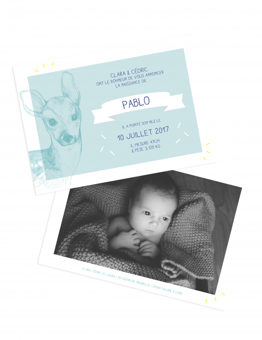 Faire-Part naissance Little doe Bleu